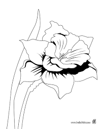 Detailed Coloring Pages For Adults The