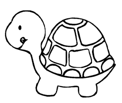 Small Picture Coloring Pages To Print Turtle Coloring Pages