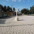 imagem de Jandaíra Bahia n-10