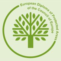 Диплом Совета Европы Центрально Черноземный государственный  Диплом Совета Европы