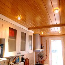 Types Of Ceilings Kitchen Outstanding Types Ceilings Engineering Different