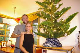 Buy A Local Christmas Tree And Help A Great Organization At The Christmas Tree Hawaii