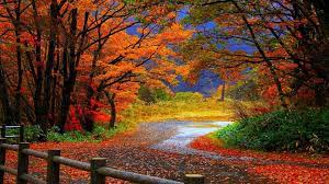 Autumn Scenes Wallpapers - Top Free ...