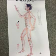 Acupuncture Wall Charts Download Chinese Medical Acupuncture Points Charts 7 Pieces Set