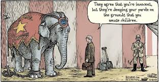 random some satirical cartoons on animal cruelty three circles  for writing essay on earthlings i found quite a few of these cartoons on google very interesting since i ve not seen these many on animal cruelty in