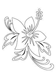 Small Picture hawaii flower outline Pin Hibiscus Coloring Pages 11170 Hd