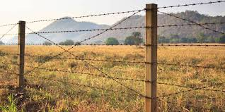 barbed wire fences. Wonderful Fences For Barbed Wire Fences E