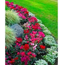 backyard flower garden layout