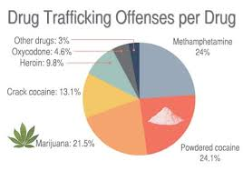 Cocaine Chart Drug Trafficking By The Numbers The Recovery Village