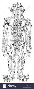 Acupuncture Chart Nchinese Acupuncture Chart Showing The