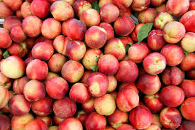 All About Nectarines - How to Pick, Prepare & Store | Produce for Kids