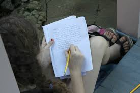 disadvantages of online education essay homework