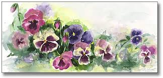 Image result for pansies images