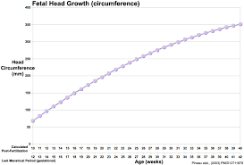 File Fetal Head Growth Circumference Graph01 Jpg Embryology