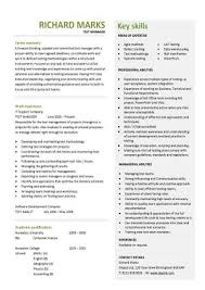 Estate Agent Cv Cv Template Examples Writing A Cv Curriculum Vitae Templates Cv