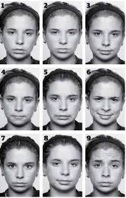 Can You Decode These Emotions Emotion Recognition Body