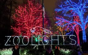 Alexandria Zoo Holiday Lights I Went To Zoolights By Myself Is That Weird The