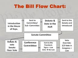 Bill To Law Chart How A Bill Becomes A Law Sarah Elsasser By Sarah Elsasser