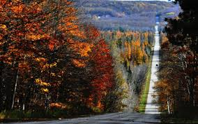 best northern michigan county roads for