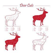 Deer Meat Chart Deer Venison Meat Cut Diagram Scheme Elements Set Red On