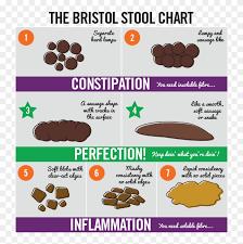 Dog Poop Normal Cake Bristol Stool Chart Hd Png Download
