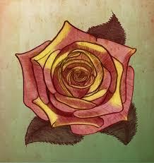 Images Gratuites Cru R Tro Feuille Fleur P Tale Rose Vert