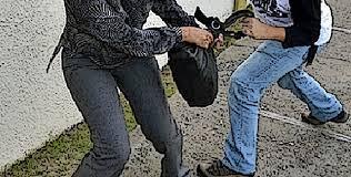 Resultado de imagen para robo cartera