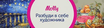 <b>Наборы для творчества Molly</b>   My-shop.ru