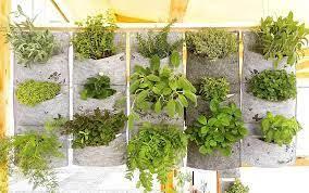 housewarming gift wall planter