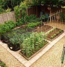 Vegetable Garden Layout Ideas And Design I Gardening On Apartment