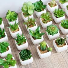 decorative plants for office. 30 Styles Artificial Plants With Vase Bonsai Tropical Cactus Fake Succulent Potted Office Home Decorative Flower For S