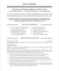 New Media Executive Page2 It Resume Samples Pinterest Free