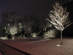 landscape lighting trees. landscapelightingtreesjpg 1024768 pixels landscape lighting trees u