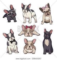 cute french bulldog clipart. Simple French Funny Puppies Of French Bulldog Vector Bulldog Puppy Cute  Pet Drawing Throughout Cute Bulldog Clipart B