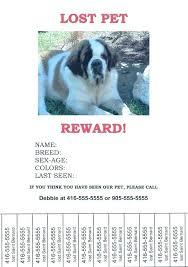 Dog Flyer Template Free Lost Dog Flyers Template Missing Pet Flyer Poster Reward Cat