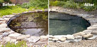 ht dwp pond rehab beforeaftercollage
