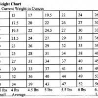 Boxer Puppy Growth Chart Goldenacresdogs Com The 12500 Happiest Dog All Dog Types