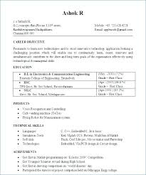 Free Resumes Builder Delectable Fre Resume Builder Free Resumes Builder In Free Resume Builder