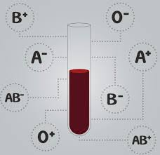 The Blood Type Diet Does Your Food Match Your Blood Type