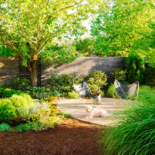 Small Picture Garden design ideas dogs Video and Photos Madlonsbigbearcom