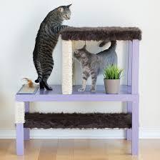 make a homemade cat condo