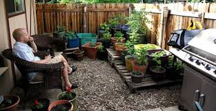 Small Picture Exellent Cheap Garden Ideas Uk Low Maintenance Throughout Decorating