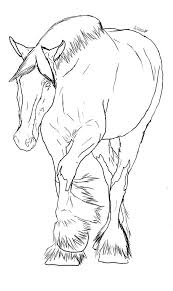 Bucking Foal Coloring Pages