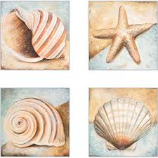 Coasterstone As10080 Seashell Collection Absorbent Coasters 4 1 4 Inch Set Of 4