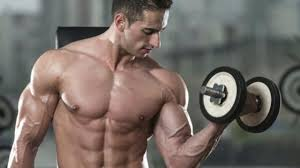 Craxy Bulk Muscle Building