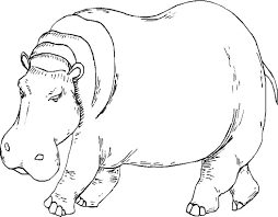 Small Picture Printable Hippo Coloring Pages Coloring Me