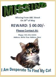 Lost Pet Flyer Maker Stunning Lost Poster Template Found Dog Poster Template Alluring Lost Pet