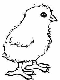 Remarkable Chick Coloring Page Baby Free Printable Pages For Kids
