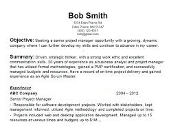 Objective In Resume For It Awesome Objective Resume Samples Sample