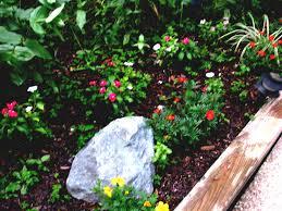 fullsize of the small gardens front ideas idea vegetable design plants honey beesmunity planning guide plan